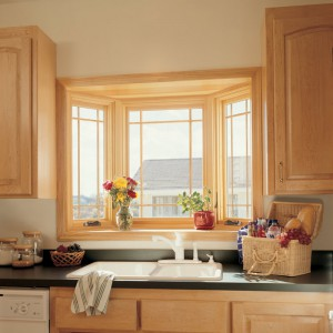 Infinity Bay Window in Menasha Kitchen